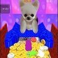 犬のコイン落とし