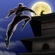 Ninja Rising