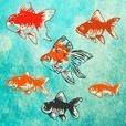 金魚育成アプリ-簡単なお世話でキンギョを育てる癒しのゲーム