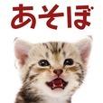 ねこめくり トランプ猫ソリティア 人気アプリ 完全無料ゲーム