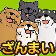 こちょ いぬ三昧〜かわいい犬アプリ〜