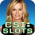 Icon: CSI:科学捜査班~Slot~CSI:科學搜查班~Slot~