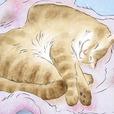 猫の恋 【涙腺崩壊】