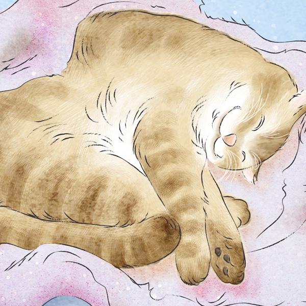 猫の恋【涙腺崩壊】