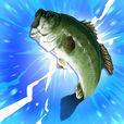 ふりーだむふぃっしんぐ(Freedom Fishing)