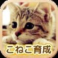 まったりこねこ育成ゲーム-癒しのねこ飼育アプリ