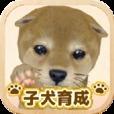 まったり子犬育成ゲーム - のんびり育てる犬育成ゲーム無料