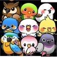 バードライフ -鳥さん育成ゲーム-