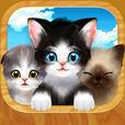 猫の世界 SNG