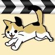 日刊ねこ動画 - 猫動画まとめ