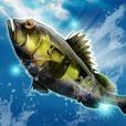 釣りコレクション