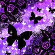 [キラ姫専用テーマ] Butterfly Dream