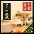 和風総本家/十代目豆助(冒険05)ライブ壁紙