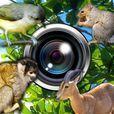観察カメラ (静音)