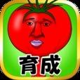 美味しいトマトになりたくて【無料育成ゲーム】