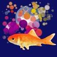 金魚すくいアプリ