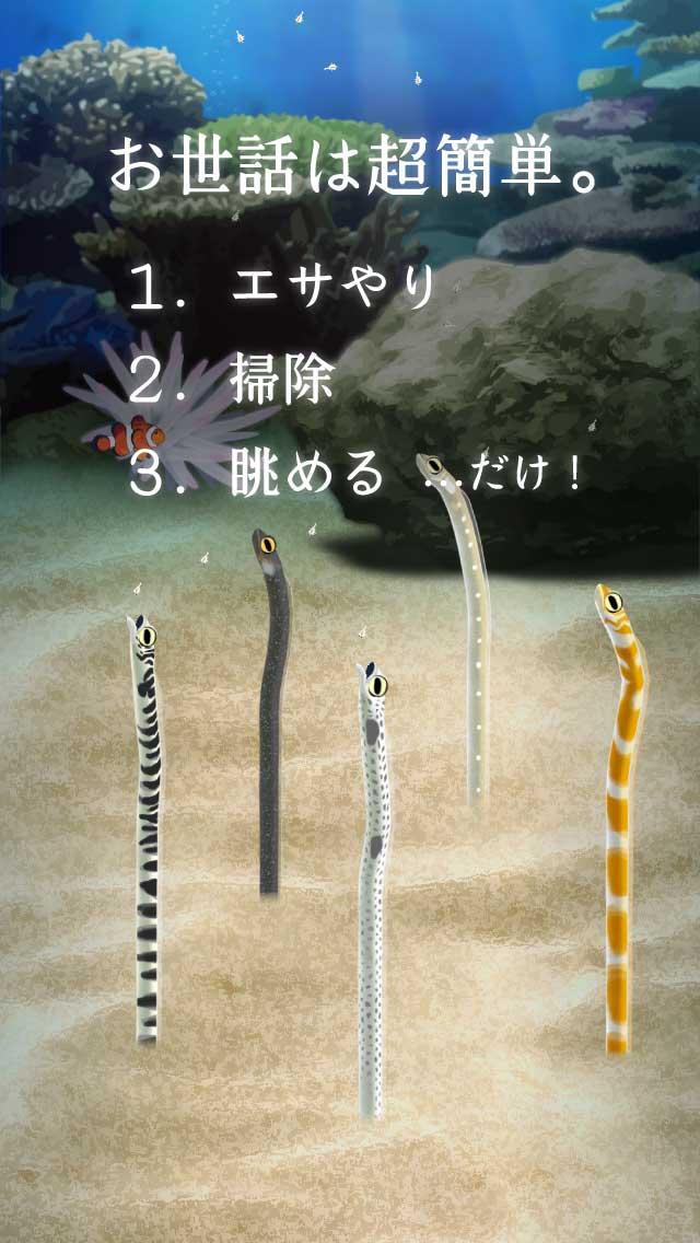 癒しのチンアナゴ育成ゲームのスクリーンショット_2