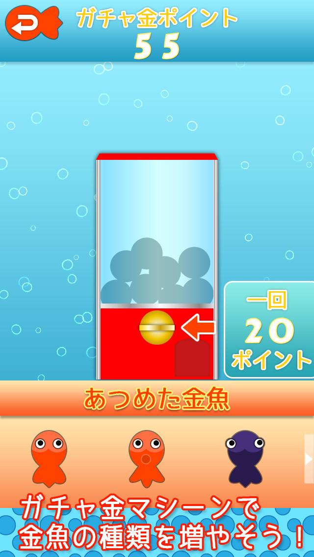 金魚すくってのスクリーンショット_5