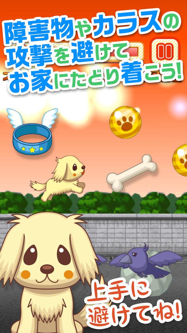 わんわんラン!~いぬをしつけ、育成する無料あくしょんの犬ゲームアプリ~のスクリーンショット_1