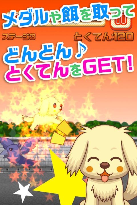 わんわんラン!~いぬをしつけ、育成する無料の犬ゲームアプリ~のスクリーンショット_2