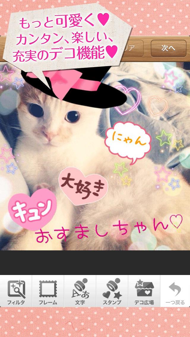 パシャっとmyペット〜可愛いペットの写真共有SNS〜のスクリーンショット_2