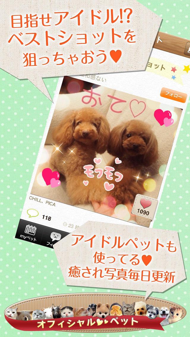 パシャっとmyペット〜可愛いペットの写真共有SNS〜のスクリーンショット_4