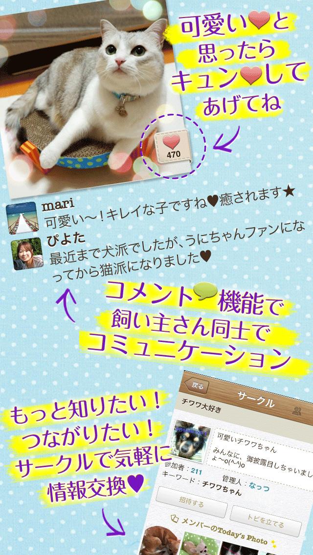 パシャっとmyペット〜可愛いペットの写真共有SNS〜のスクリーンショット_5