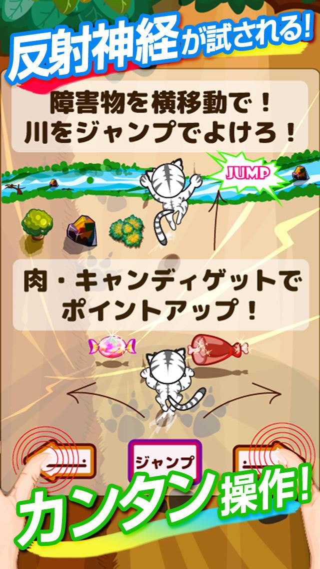タイガーランナー~トラが大自然でレースするスピードランニングゲーム~のスクリーンショット_2