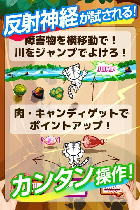 タイガーランナー~トラがレースするスピードランニングゲーム~のスクリーンショット_2