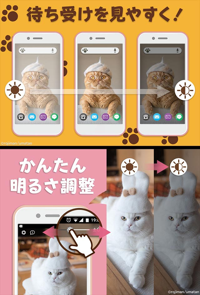 猫壁紙「抜け毛帽子」のスクリーンショット_2