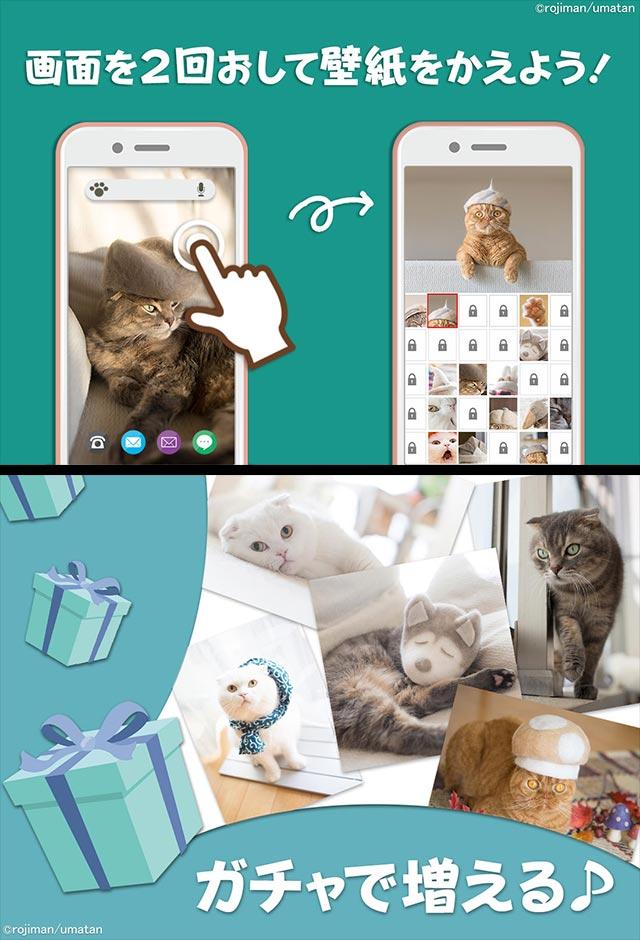 猫壁紙「抜け毛帽子」のスクリーンショット_3