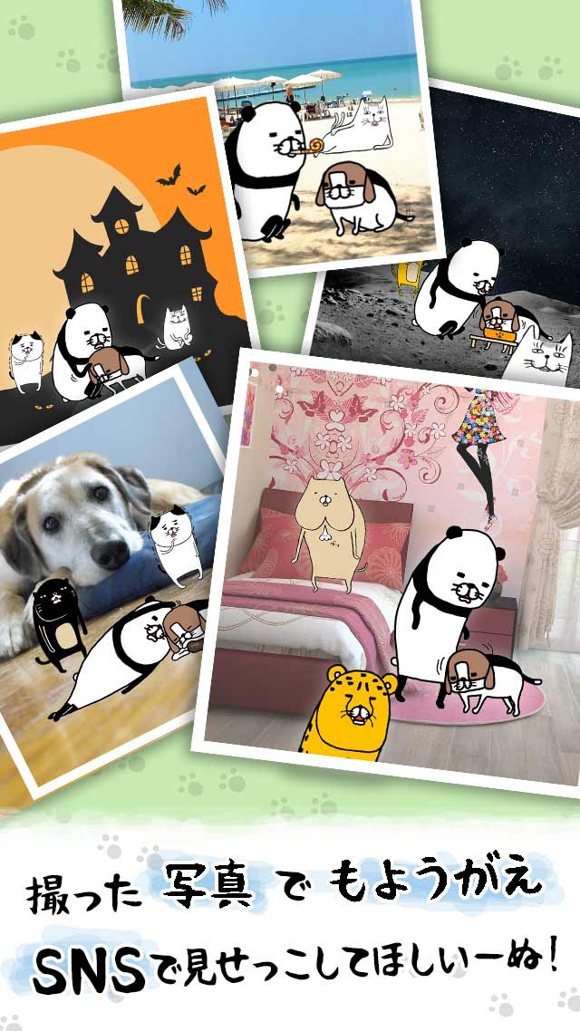 パンダと犬 いつでも犬かわいーぬのスクリーンショット_4