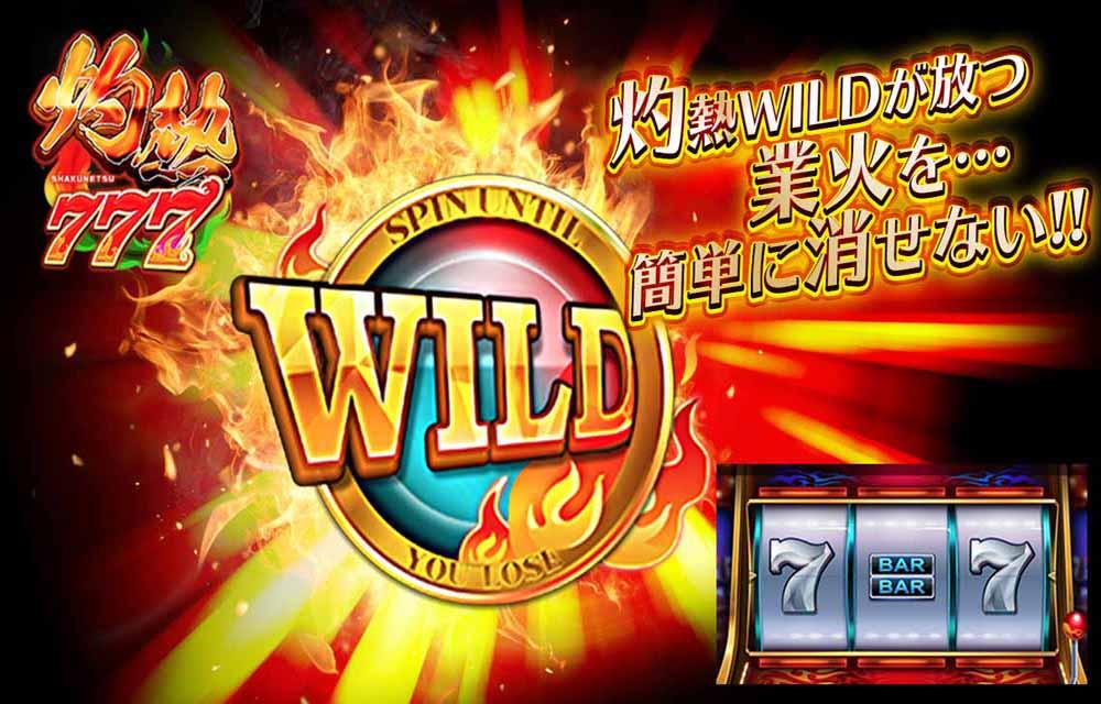 カジノ王国~MOBILE~のスクリーンショット_4