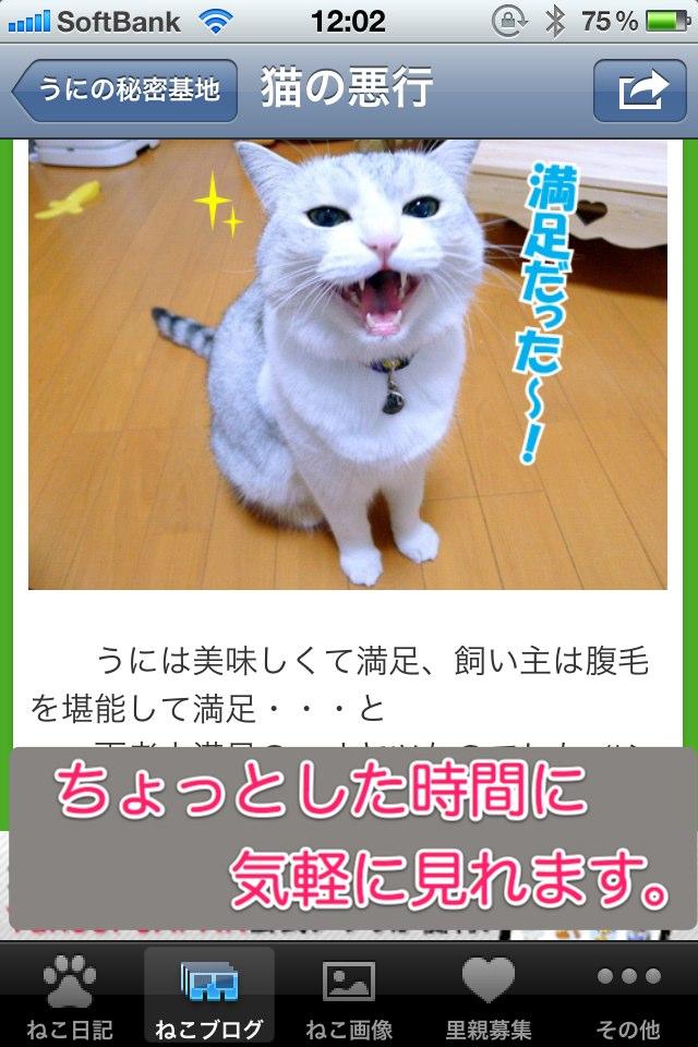 日刊ねこ新聞-猫情報まとめのスクリーンショット_2