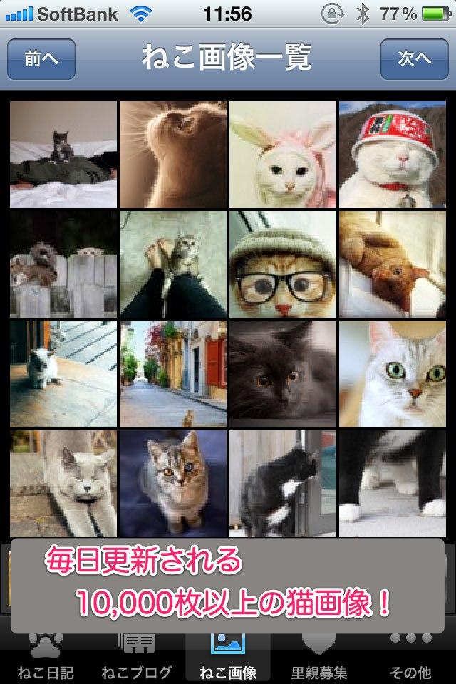 日刊ねこ新聞-猫情報まとめのスクリーンショット_3