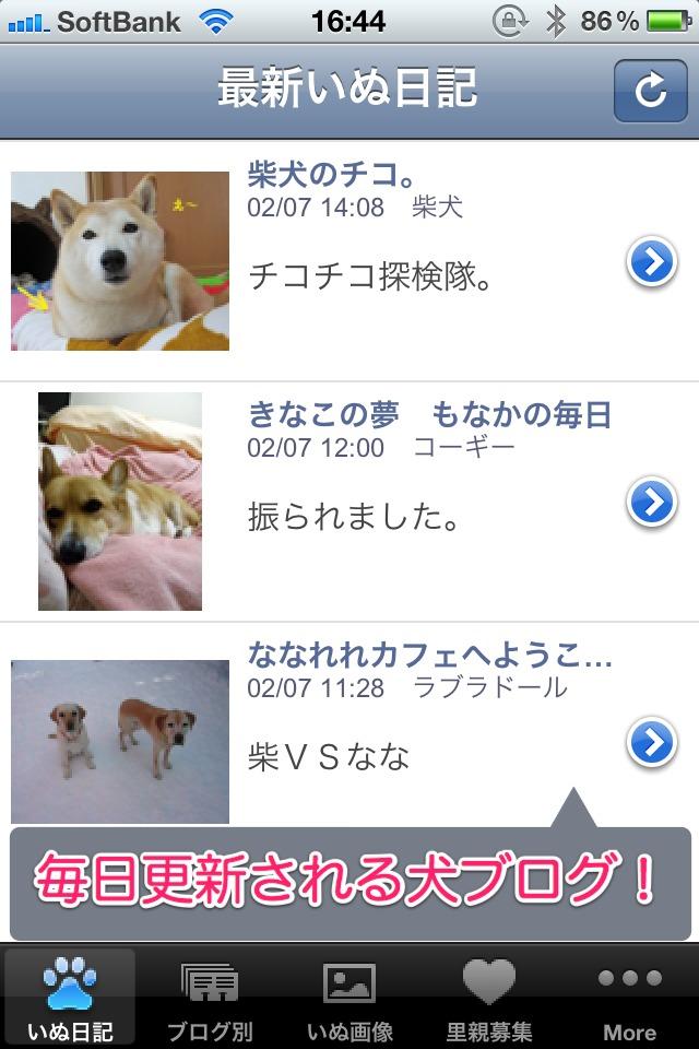 日刊いぬ新聞-犬情報まとめのスクリーンショット_1