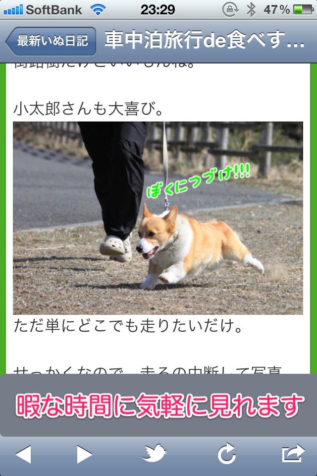 日刊いぬ新聞-犬情報まとめのスクリーンショット_2