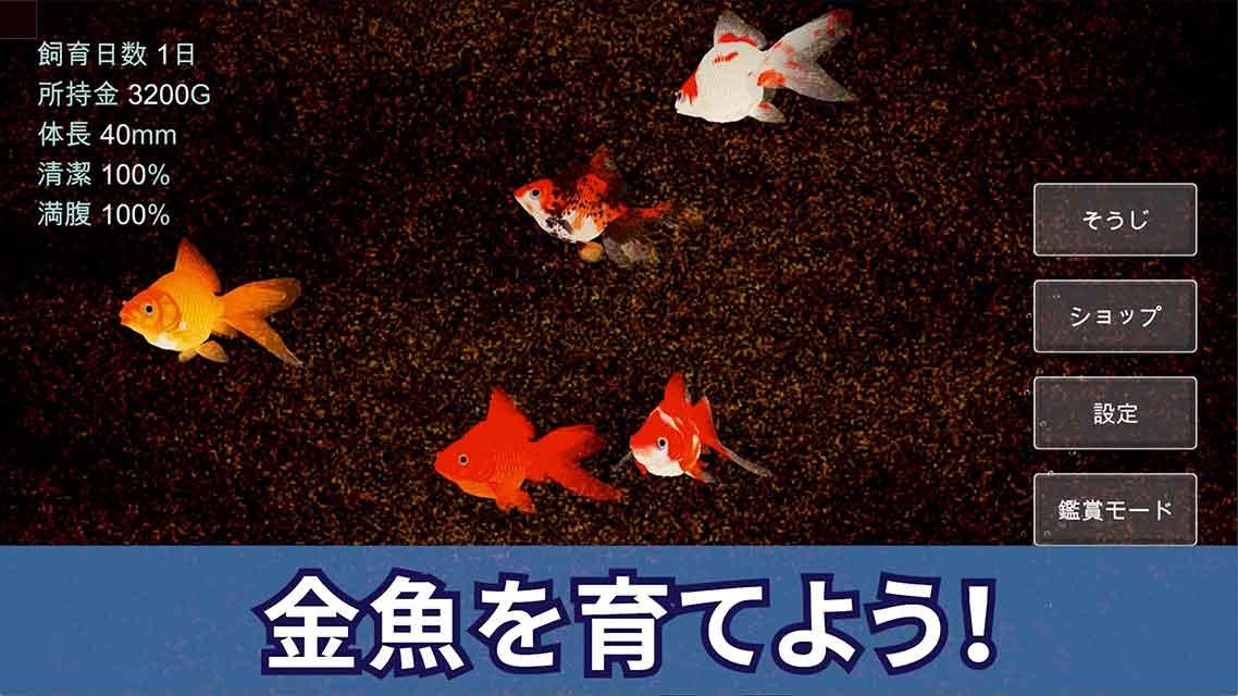 ポケット金魚のスクリーンショット_1