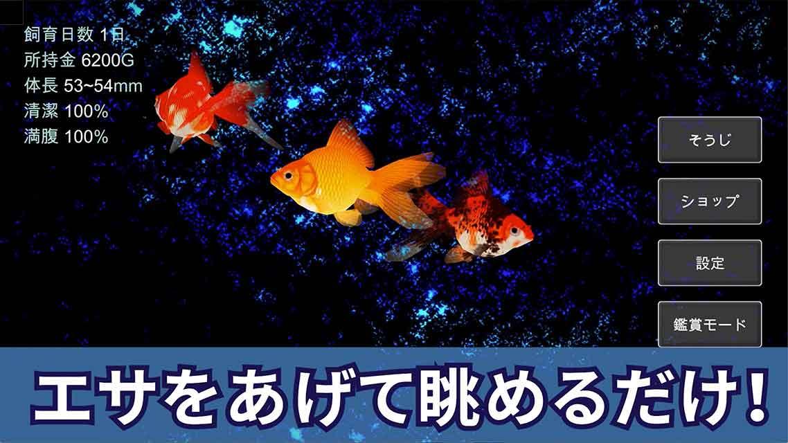 ポケット金魚のスクリーンショット_2