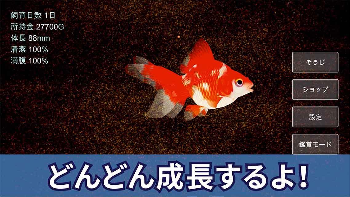 ポケット金魚のスクリーンショット_3