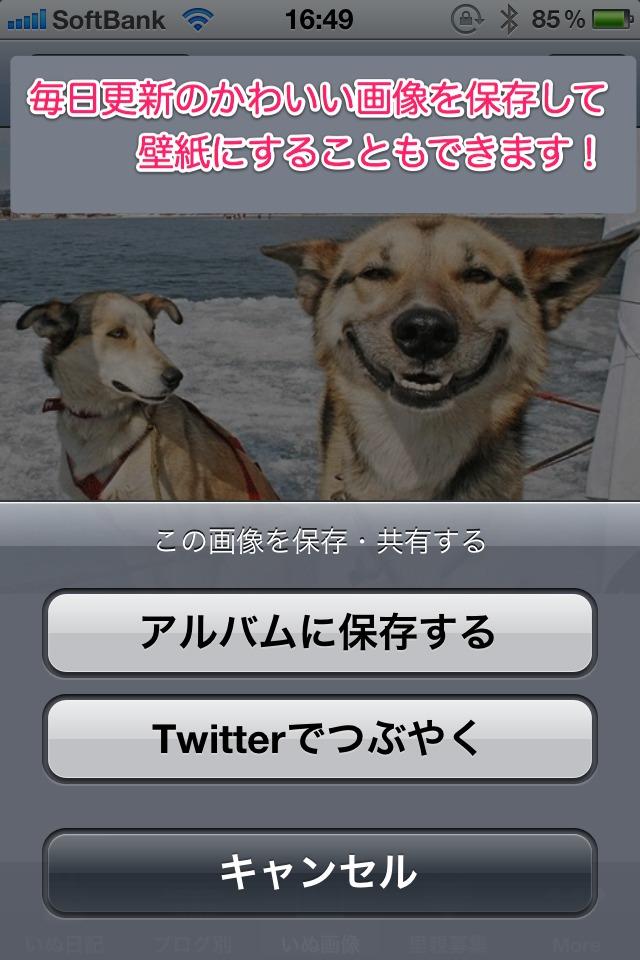 日刊いぬ新聞-犬情報まとめのスクリーンショット_4