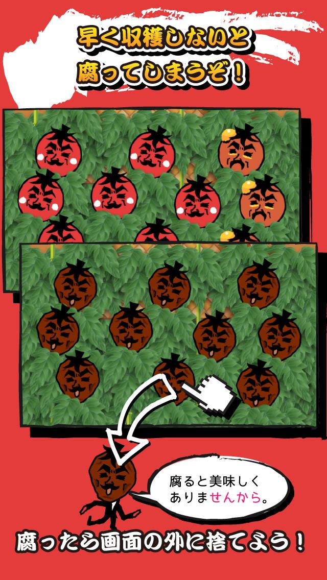 伊達にミニトマトやってませんからのスクリーンショット_3