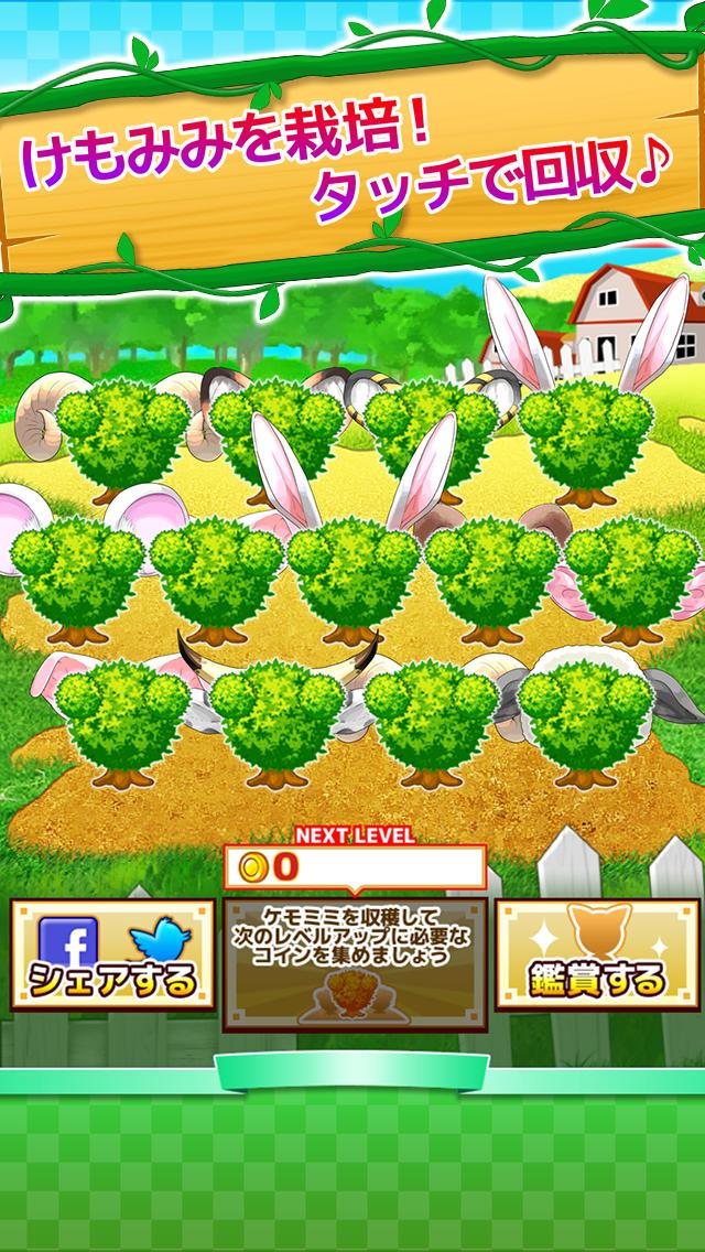 けもみみ農園のスクリーンショット_1