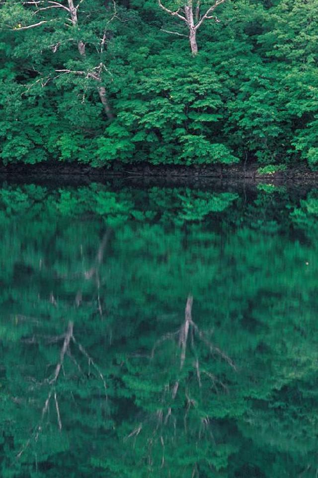 自然/風景 写真集のスクリーンショット_2