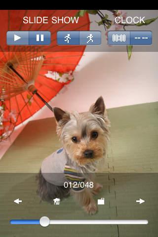 コロクのアルバム(犬の写真集)のスクリーンショット_3