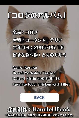 コロクのアルバム(犬の写真集)のスクリーンショット_5