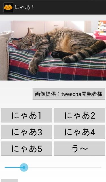 にゃあ!のスクリーンショット_2
