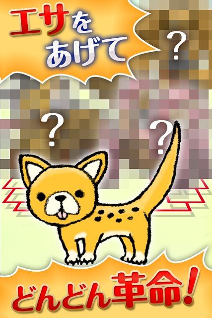 わんこれぼりゅーしょん~犬をしつけ育てるかわいい育成ゲーム~のスクリーンショット_4