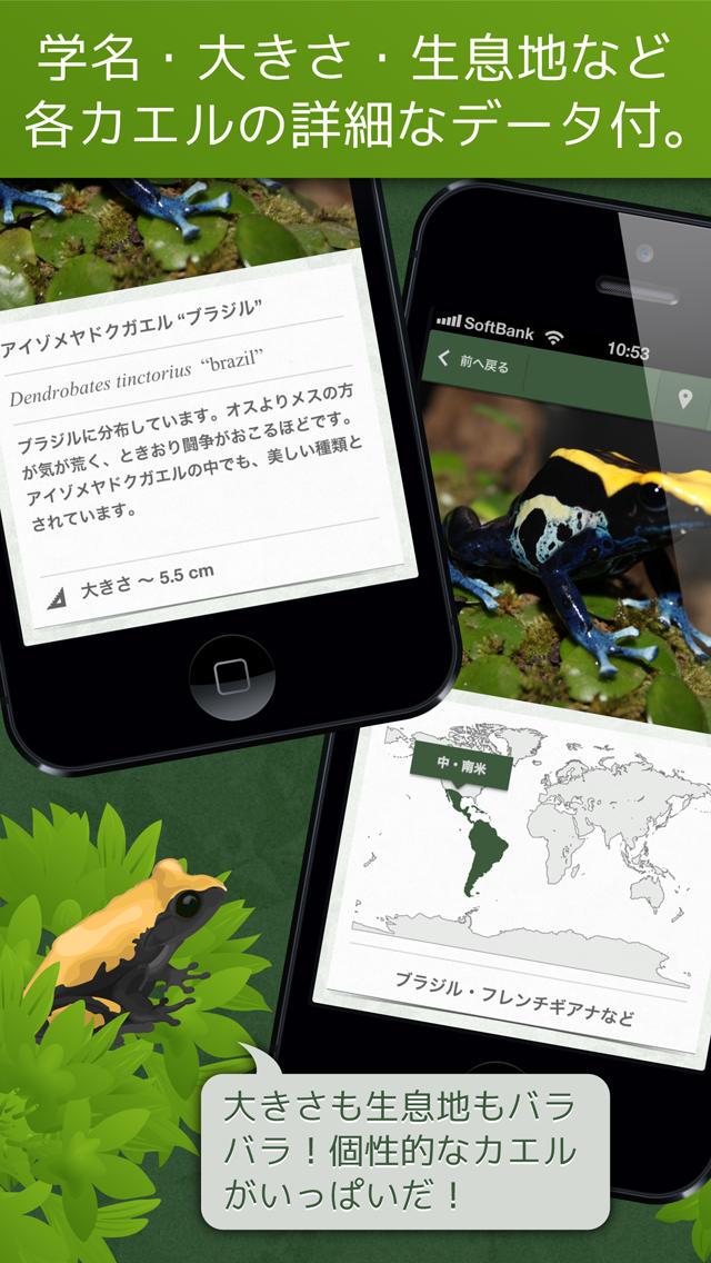 あわしま世界のカエル図鑑FREEのスクリーンショット_3