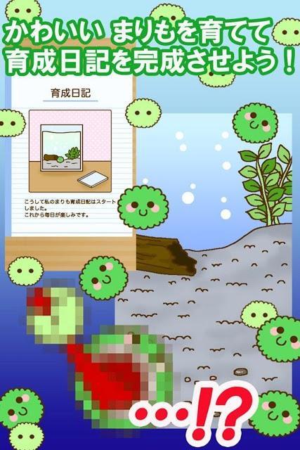 かわいい育成ゲーム 『まりまりも育成日記』のスクリーンショット_1